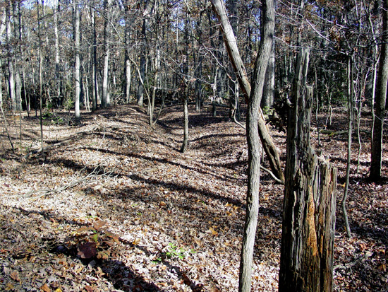 Confederate earthworks