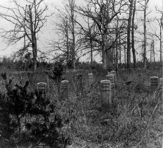 Graves of Mississippi soldiers