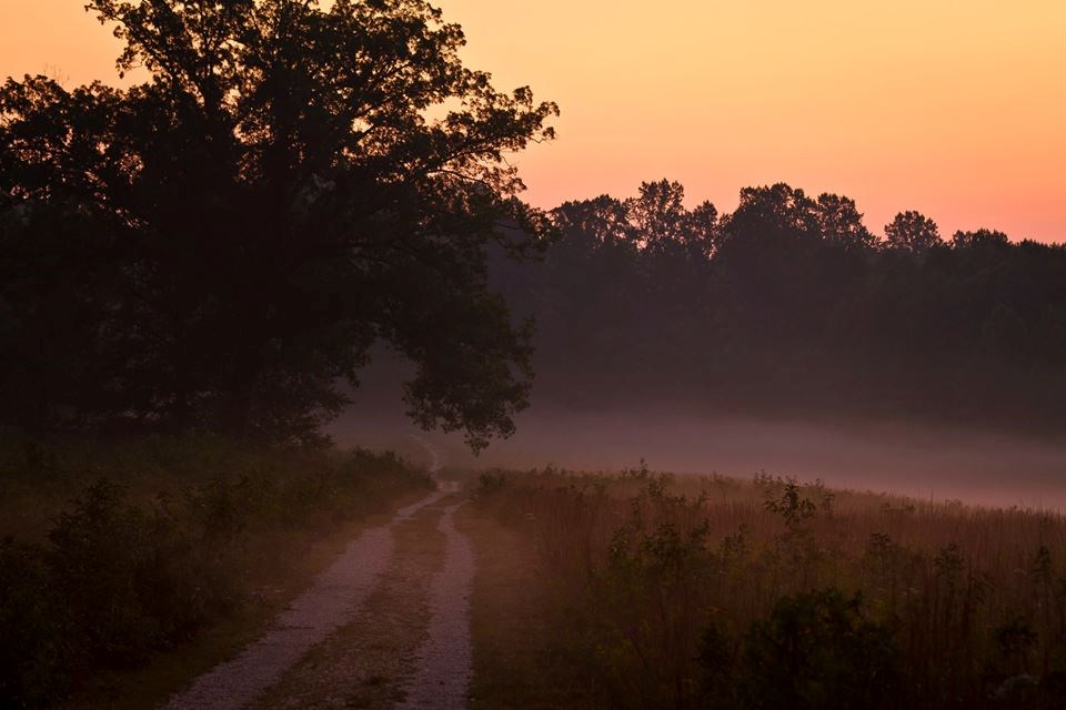 Sun sets and mist hangs low over a dirt section of the Spotsylvania History Trail