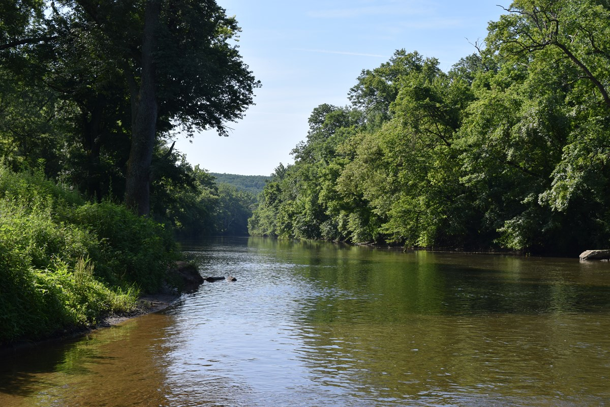 Looking down the Brandywine Creek on a sunny summer day.