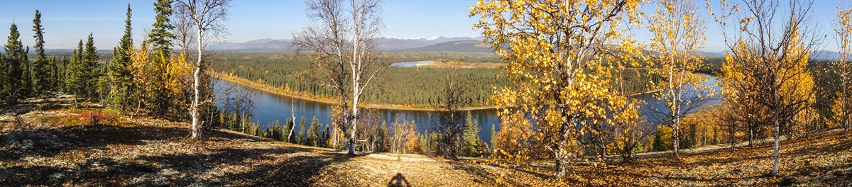 Panoramic photo overlooking Kobuk River drainage in fall colors