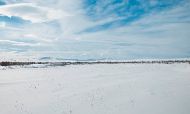 An expansive snowy winter scene on the arctic tundra with mountains in the distance