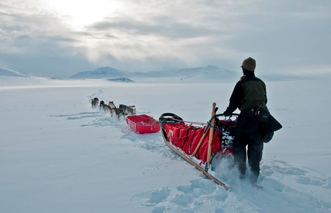 A musher & dog team head off into the vast snowy tundra towards distant mountains