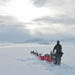 A musher and dog team travel across a wide open snowy tundra landscape towards distant mountains in winter