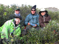 Group photo of four people bundled up against the cold in a sheltered shrubby place.