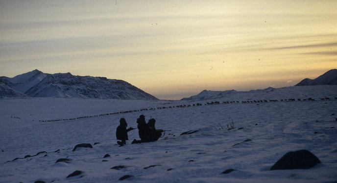 Nunamiut Eskimos hunting caribou on a dusky winter's evening.