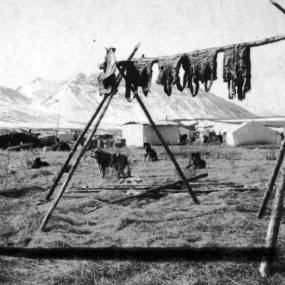Caribou meat hanging to dry