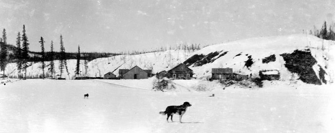 Historic image of the town of Bettles during the winter of 1900 with a dog standing on the frozen river in the foreground.