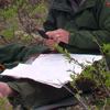 A ranger checks his location with a map and compass.