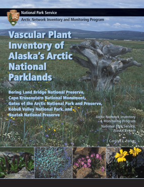 Technical Report Cover with a photo of a weathered stump surrounded by wildflowers.