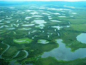 A  mosaic of wetlands from the air.
