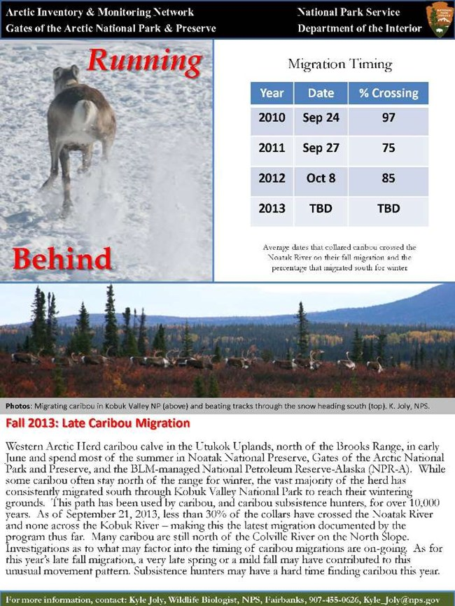 Late Fall Migration resource brief