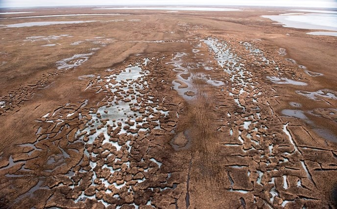 Aerial view of the wet tundra