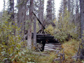 A historic cabin that fallen in on itself.