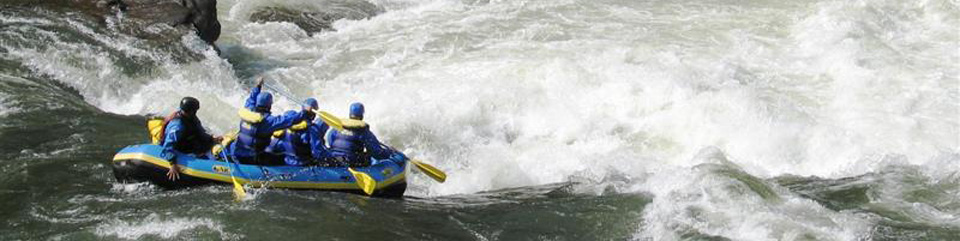 rafters paddling through whitewater