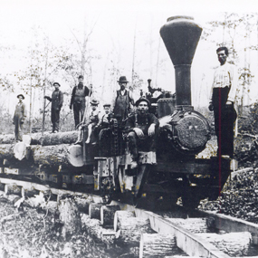 Historic photo of train hauling logs