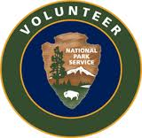 nps vip patch
