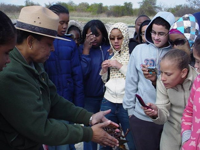 Students take a look at a horseshoe crab.