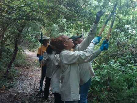 Youth Conservation Corps (YCC) students clean up trails at Jamaica Bay Wildlife Refuge.