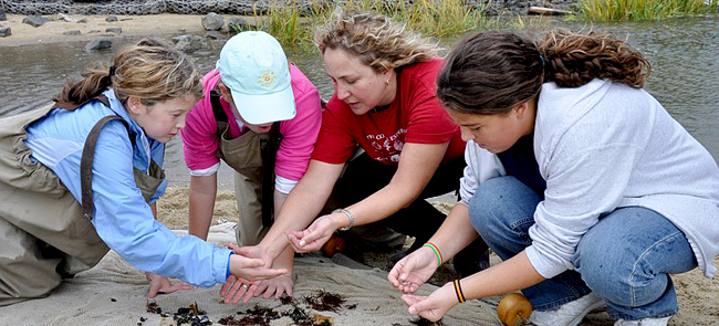 New Jersey Sea Grant Consortium offers hands-on, curriculum-based education programs at Sandy Hook.