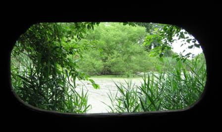 A glimpse from the viewing shed at Return-a-Gift Pond, Floyd Bennett Field.