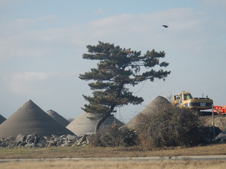 Pyramids of sifted sand await replacement on the beach at Jacob Riis Park.