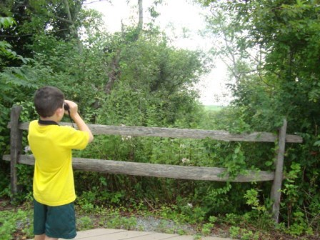 Kids love to go bird watching and Jamaica Bay is a great place to test their observation skills.