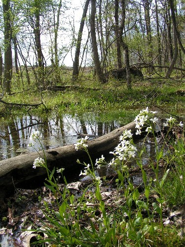 Gettysburg Academic Calendar.Natural Features Ecosystems Gettysburg National Military Park