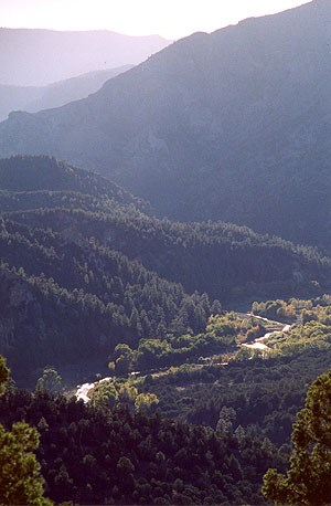 A photo of the Gila River viewed from Route 15 enroute to the Cliff Dwellings