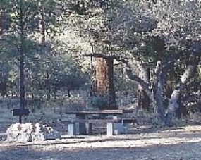 Photo of campsite