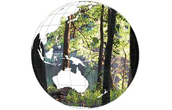 globe graphic with oceans filled by tree photo