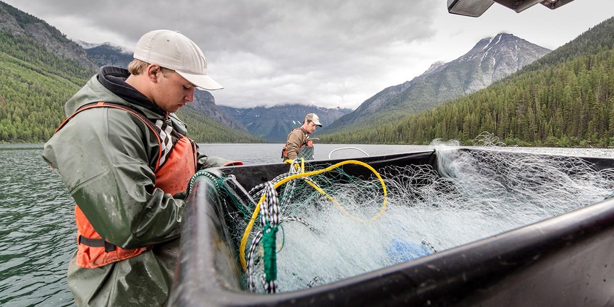 Internships - Glacier National Park (U S  National Park Service)