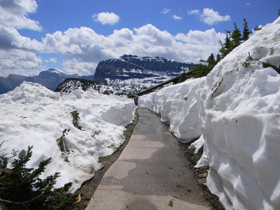 Sidewalk to Logan Pass Vistor Center web
