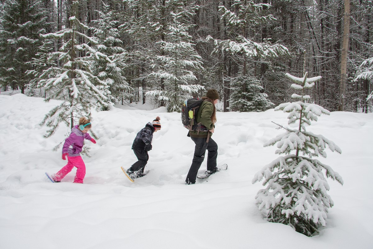 Students in snowshoes follow a ranger through the forest.