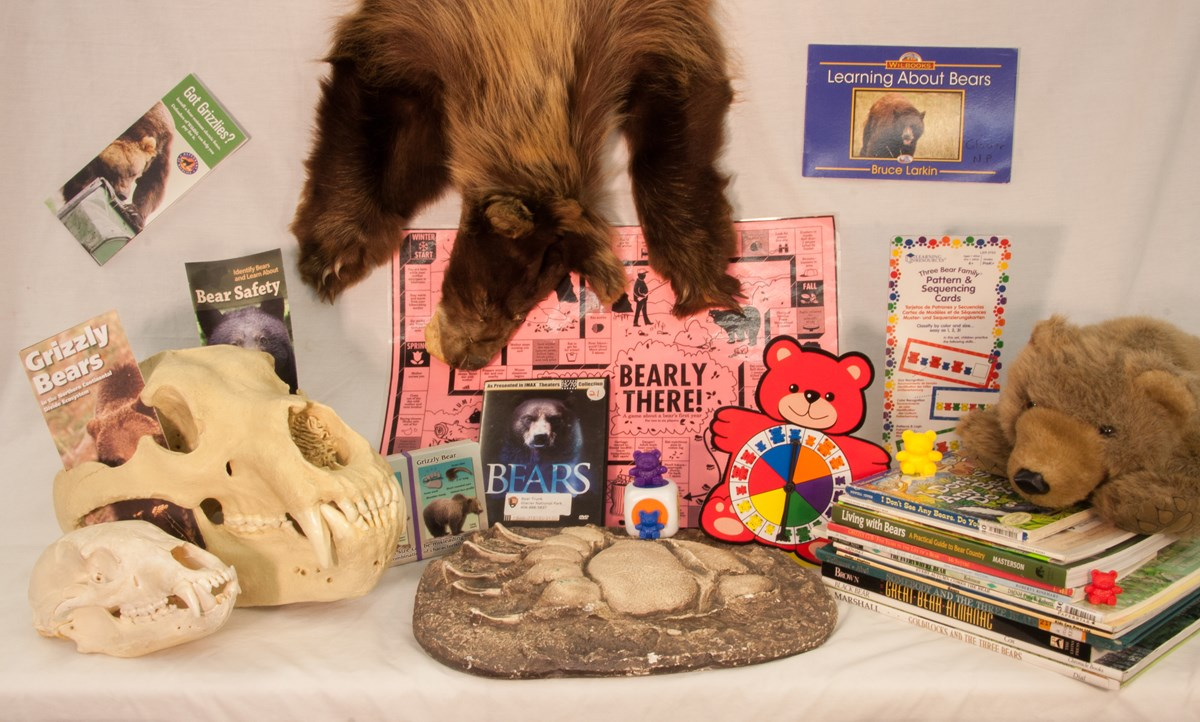 contents of bear trunk-pelt, skulls, books, games
