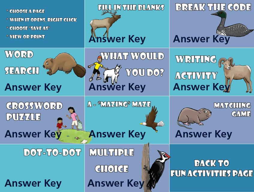 A graphic with links to 11 different activity pages, which are: Fill in the Blanks, Code Breaker, Word Search, What Would you Do?, Writing Activity, Crossword Puzzle, Maze, Matching Game, Dot-to-Dot, Multiple Choice and a Back to Fun Activities Page