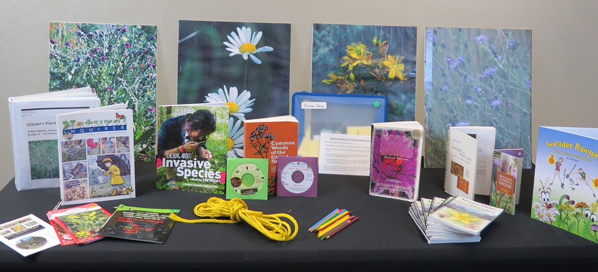 Assortment of books, field guides, photos of weeds spread out on table