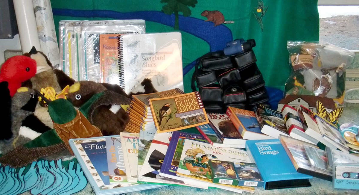 Arranged assortment of binoculars, books, and stuffed birds