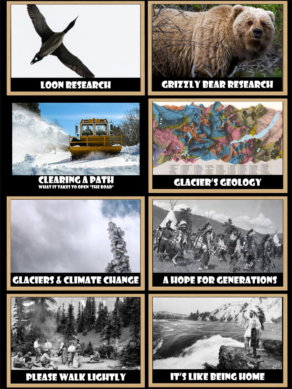 A grid of 8 photos which, when clicked, will take you to one of the eight videos which are: Loon Research, Grizzly Research, Clearing a Path (what it takes to clear the Going-to-the-Sun-Road, Glacier's Geology, Glaciers and Climate Change, and three Nati