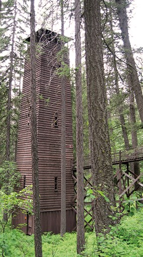 Tall wooden structure in the woods