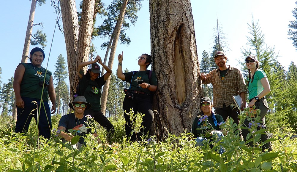 Group of seven researchers pose by a modified tree