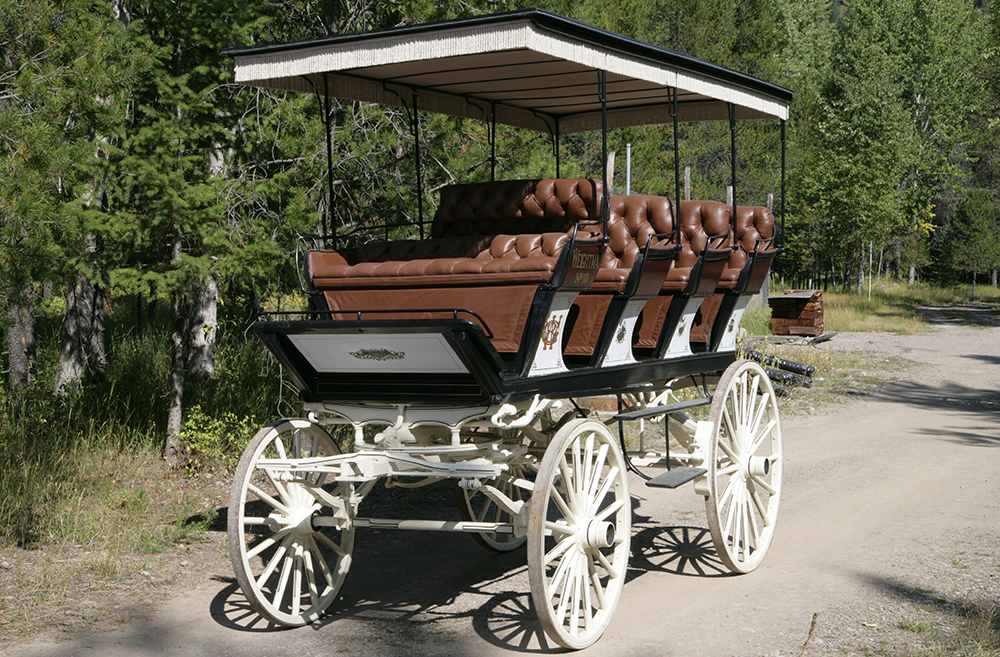 Tall wagon with 4 rows of plush seats and fringe on top