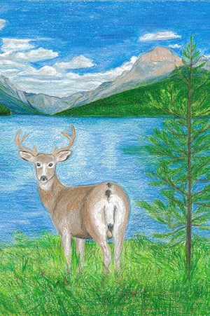 colored pencil drawing of deer by tree and lake