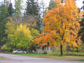 CCRLC  office in fall