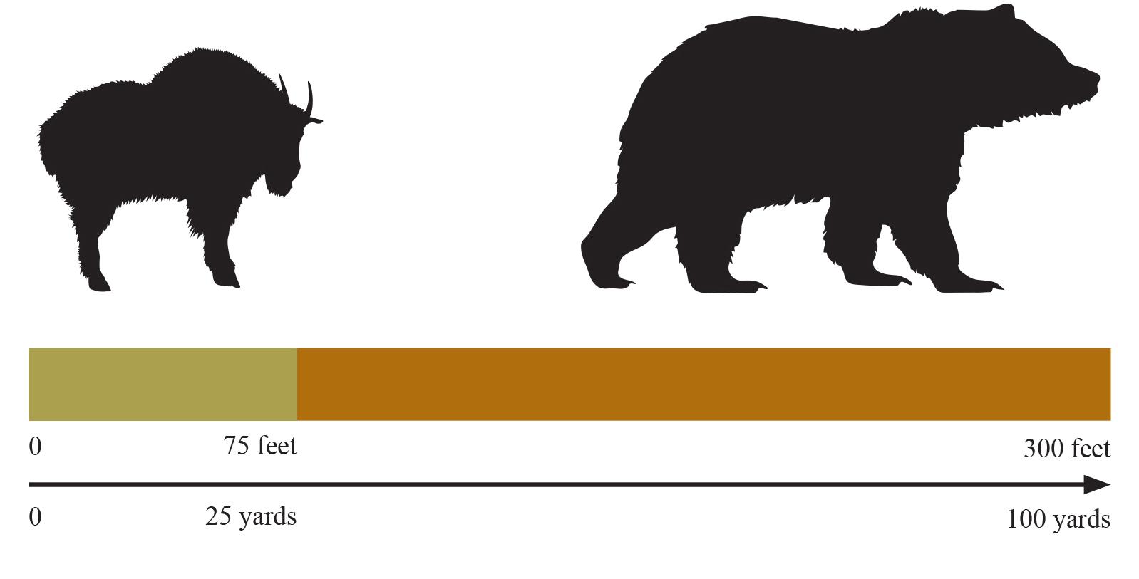 349ca18e589 Bear Safety - Glacier National Park (U.S. National Park Service)