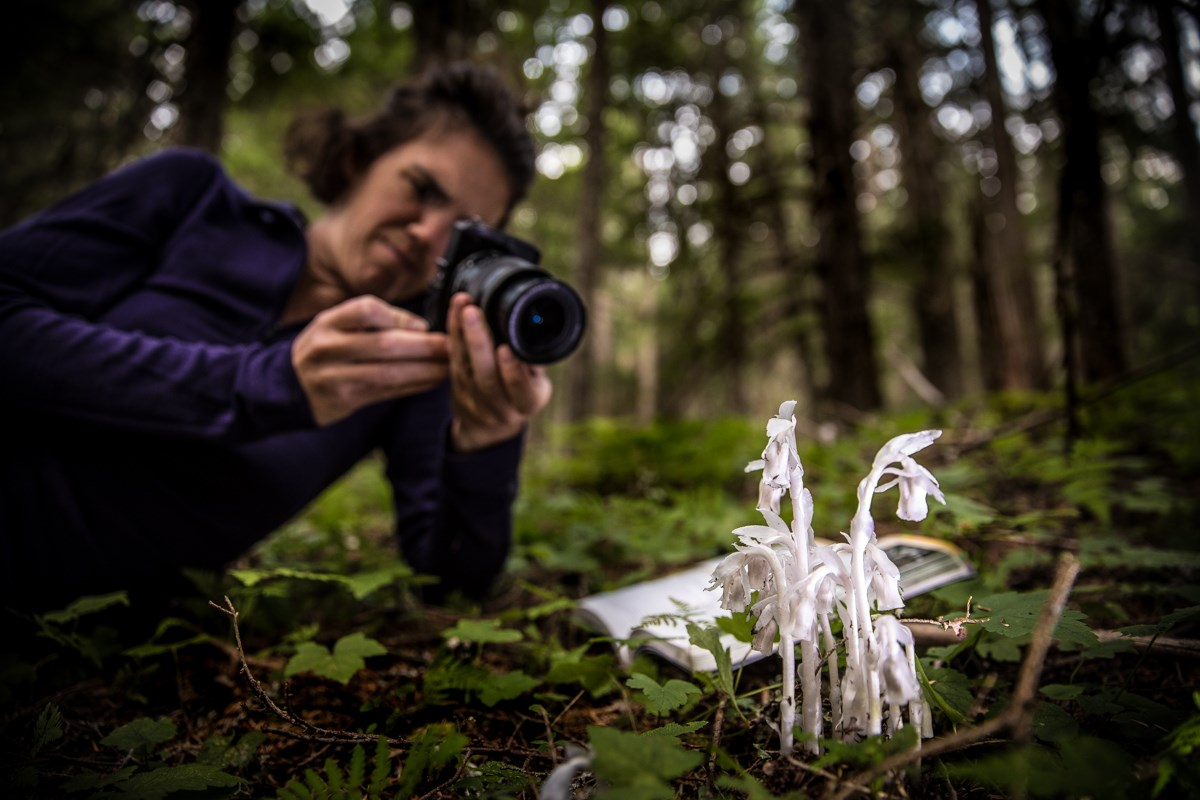 Person photographs a white bundle of flowers in a dark forest.