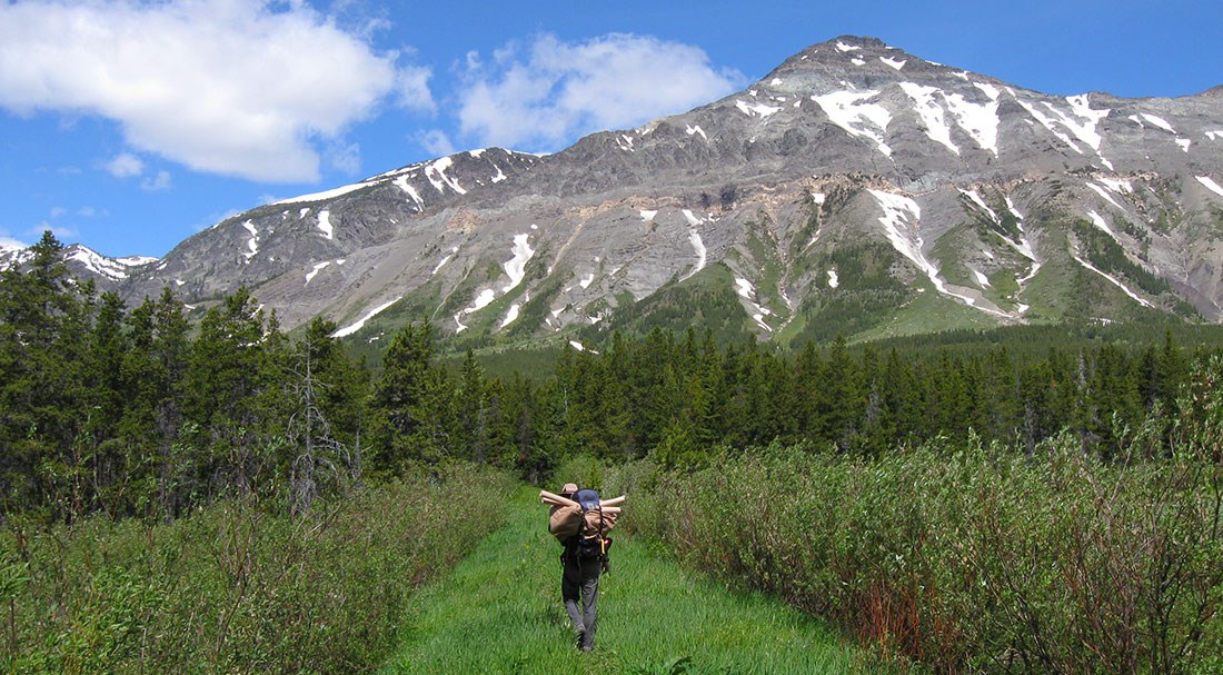 Researcher heads down grass path toward looming mountain