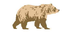 Illustration of a grizzly bear