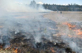 burn line across dry field monitored by two individuals