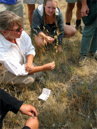 Noxious Weed Citizen Science